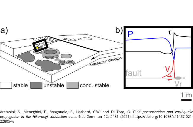 Collegamento a Saturated clayey sediments can promote shallow earthquakes in subduction zones